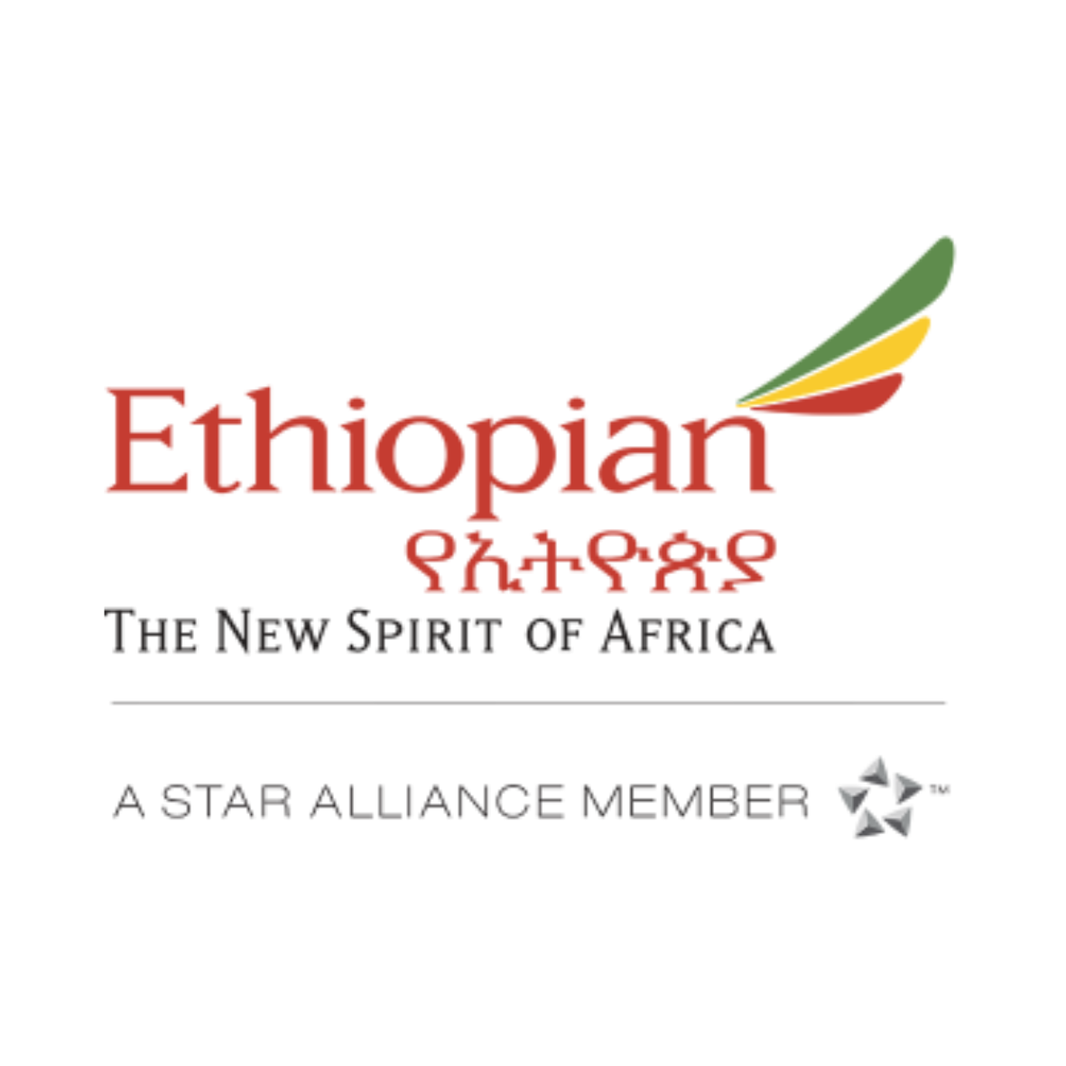 ethiopian cargo recognized at brussels airport aviation awards  u2013 embassy of ethiopia
